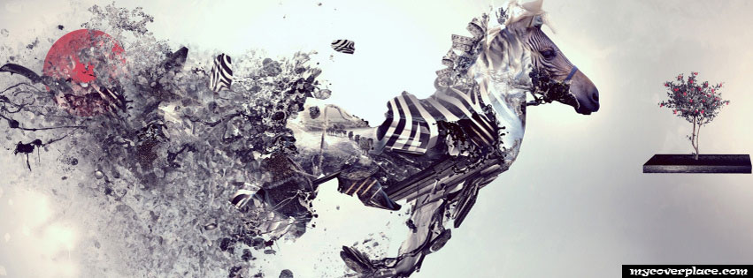 Zebra Art Facebook Cover