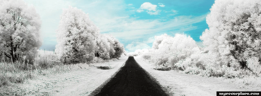 Road in the snow Facebook Cover