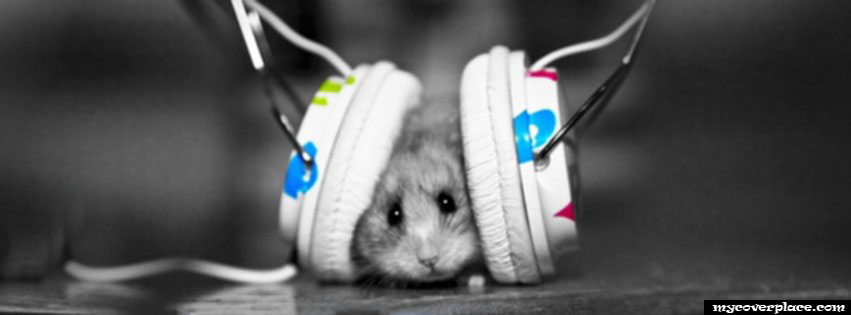 Mouse with headphones listening music Facebook Cover