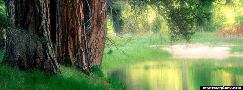 Beauty of nature Facebook Cover