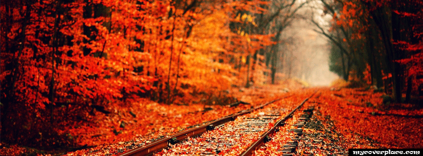 Colorful Fall Road Facebook Cover