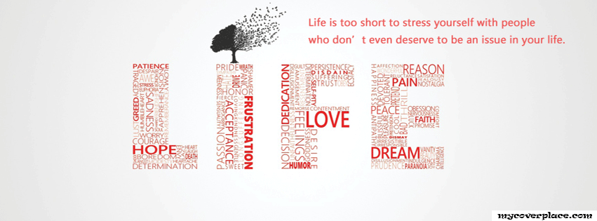 Life is too short to stress yourself  Facebook Cover