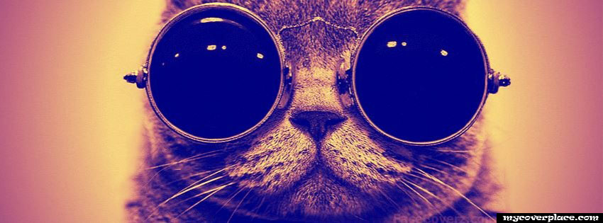 Cat with glasses Facebook Cover