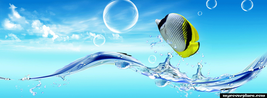 Aquafinna Facebook Cover